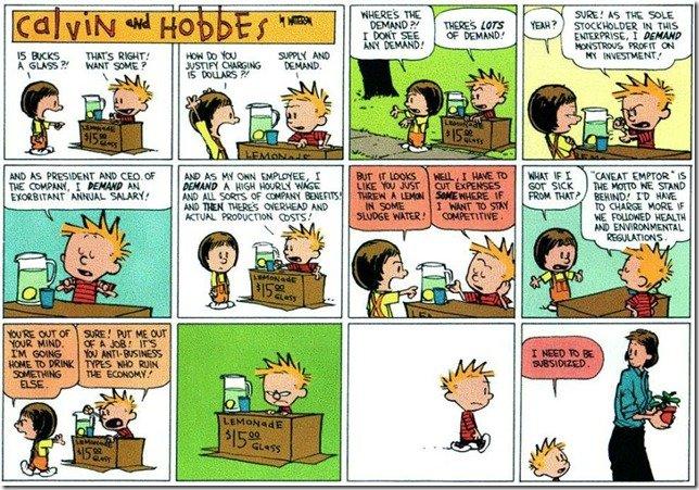 Calvin Hobbes economy