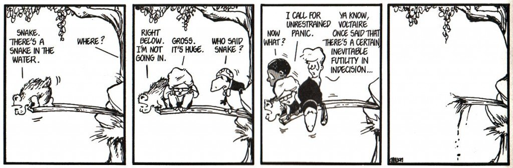 Bloom County Indecision